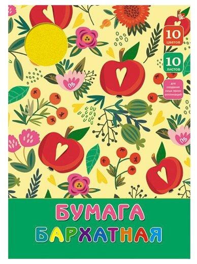 Paper Art Бумага цветная Цветы и яблоки бархатная 10 листов ББ1010125