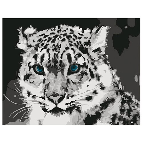 Купить Molly Картина по номерам Снежный барс 15х20 см (KH0034/1), Картины по номерам и контурам