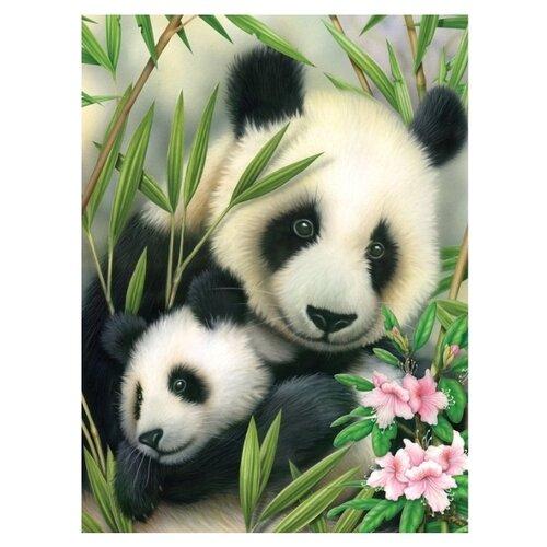 Купить Royal & Langnickel Картина по номерам Панда с малышом 22, 2х28, 9 см (PJS39), Картины по номерам и контурам
