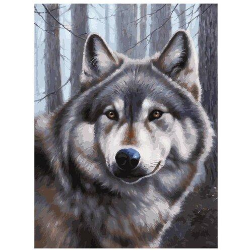 Купить Белоснежка Картина по номерам Волк 30х40 см (3090-CS), Картины по номерам и контурам