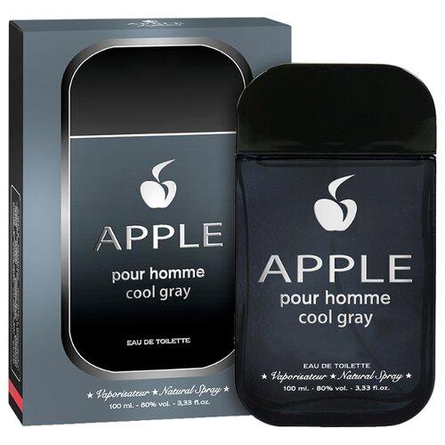 Туалетная вода Apple Parfums Apple pour Homme Cool Gray, 100 мл apple parfums туалетная вода gladiator noir мужская 90 мл