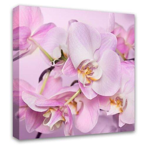Картина Симфония Орхидея 30х30 см