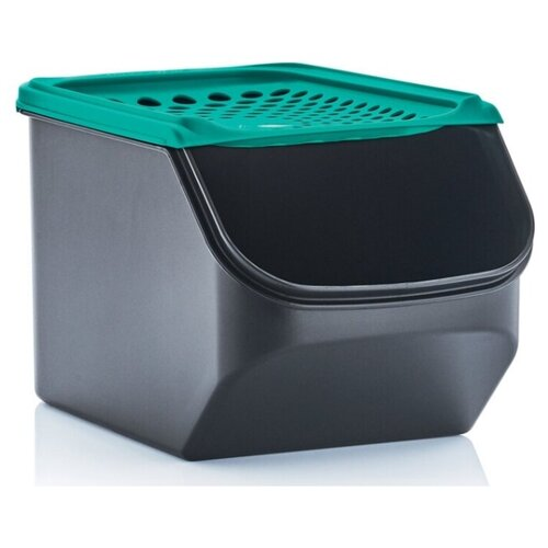 Tupperware Контейнер Дыхание черный/темно-зеленый