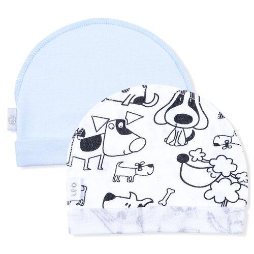 Купить Шапка LEO размер 40, голубой/белый, Головные уборы