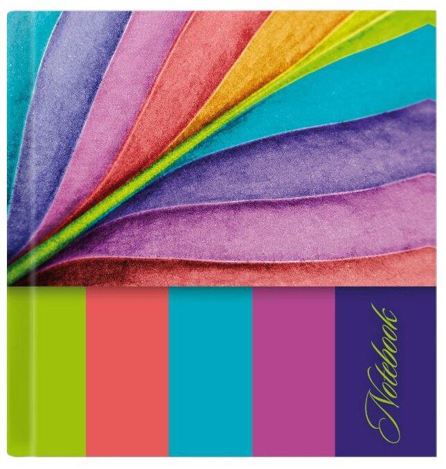 Записная книжка Феникс+ Notebook (47874), 80 листов