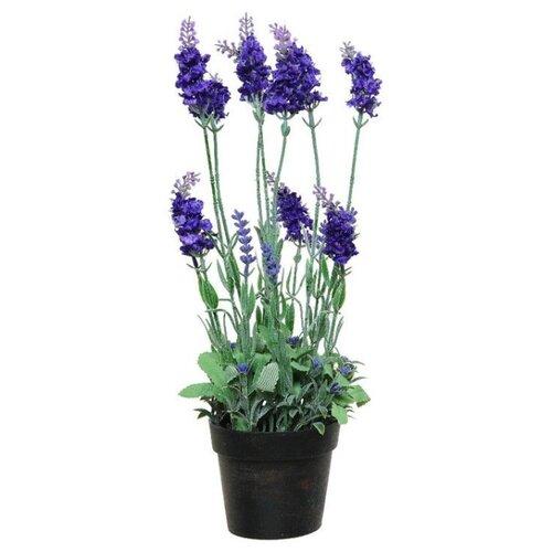 Элитные искусственные цветы ЛАВАНДА в горшочке, пластик, цвет-фиолетовый, 18x18x38 см, Kaemingk 800182-фиолетовый