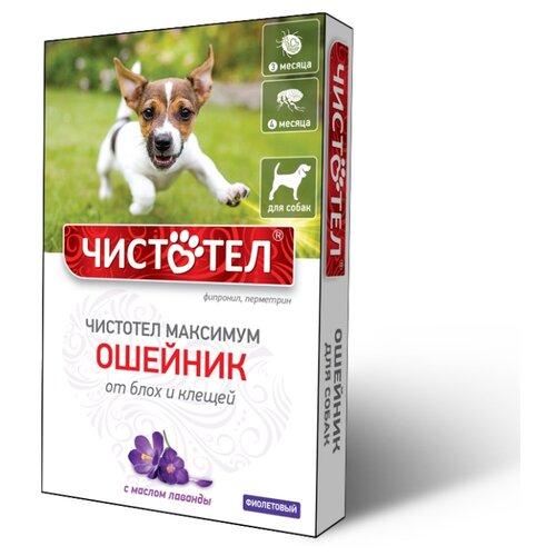 ЧИСТОТЕЛ ошейник от блох и клещей Максимум для собак и щенков, 65 см, фиолетовый