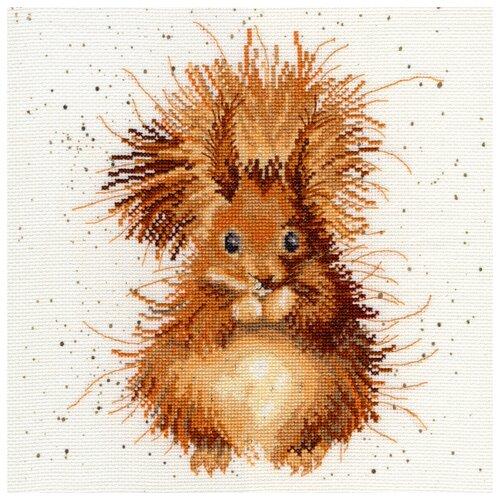 Купить Bothy Threads Набор для вышивания Бельчонок 26 х 26 см (XHD14), Наборы для вышивания