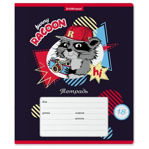 Купить ErichKrause Упаковка тетрадей Funny Racoon 018010154-49180, 10 шт., линейка, 18 л., Тетради