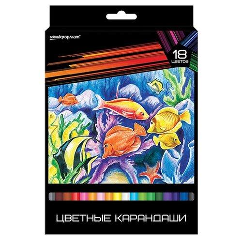 Купить SchoolФормат Набор цветных карандашей 18 цветов Дикая планета (КЦ18-ДП), Цветные карандаши