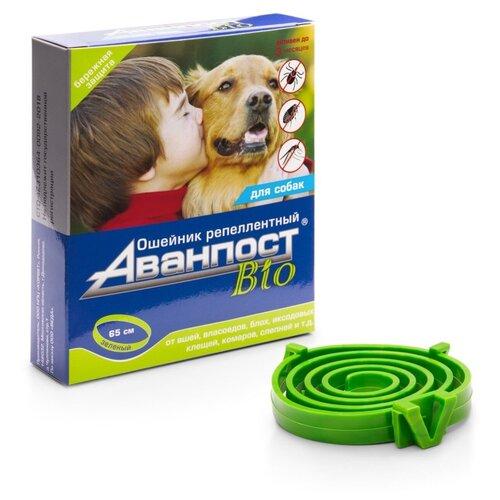 VEDA ошейник от блох и клещей Аванпост Bio для собак, 65 см, зеленый