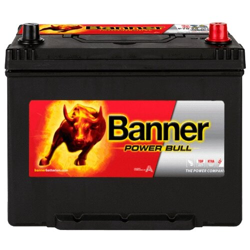 Автомобильный аккумулятор Banner Power Bull P70 29