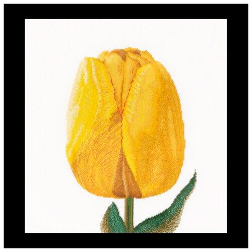 Купить Набор для вышивания Желтый тюльпан, канва лен 36 ct, Thea Gouverneur, Наборы для вышивания