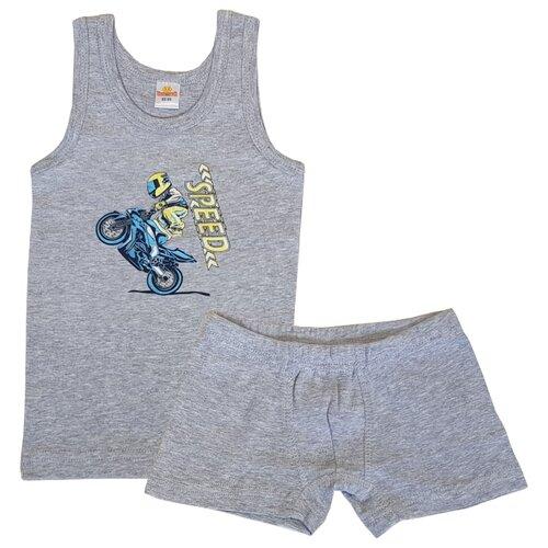 Купить Комплект нижнего белья Папитто размер 104-110, серый, Белье и пляжная мода