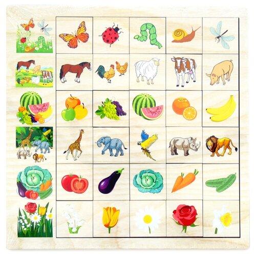 Настольная игра PAREMO Ассоциации Окружающий мир paremo обучающая игра paremo ассоциации 30 элементов