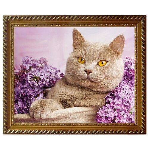 Алмазная живопись Набор алмазной вышивки Кот в сирени (АЖ-1417) 40x30 см