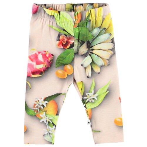 Купить Легинсы Molo Stefanie 4S20F203 размер 92, 6046 tutti frutti, Брюки и шорты
