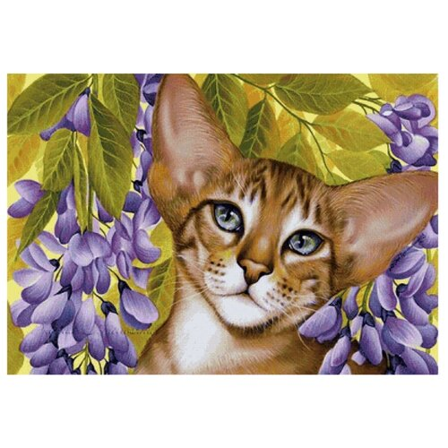 Купить Рыжий кот Картина по номерам Абиссинская кошечка в цветах 40x50 см (ХК-7893), Картины по номерам и контурам