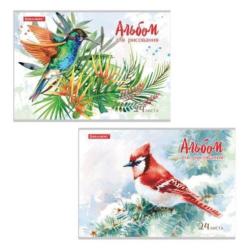 Альбом для рисования BRAUBERG Райские птички 29.7 х 21 см (A4), 100 г/м², 24 л.
