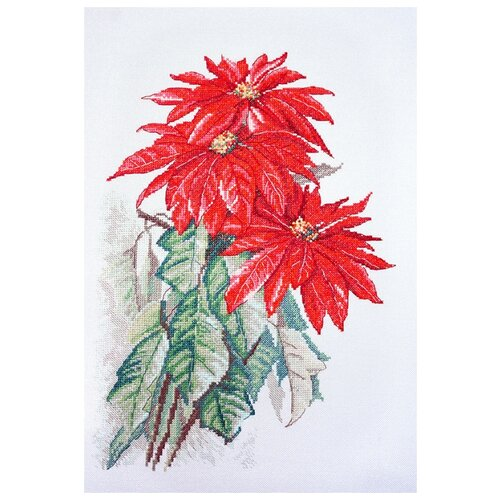 Купить Набор для вышивания Пуансеттия 25 x 35 см 06.002.74, Марья Искусница, Наборы для вышивания