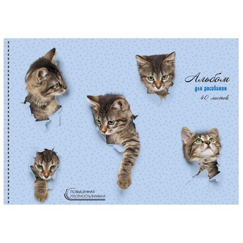 Альбом для рисования Unnika land Милые котята 29.7 х 21 см (A4), 140 г/м², 40 л.