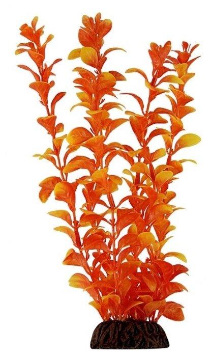 Растение Tetra Людвигия красная пластик, S