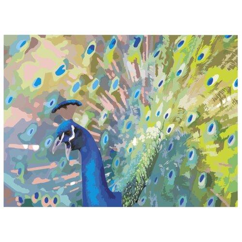 Купить Остров сокровищ картина по номерам Павлин 29х39.5 см (661628), Картины по номерам и контурам