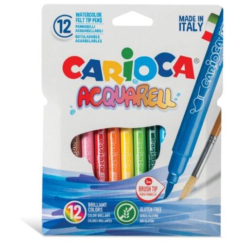 Carioca Набор фломастеров Acquarel, 12 шт. (42747) carioca набор фломастеров carioca acquarell 12 цв в картонном конверте с европодвесом