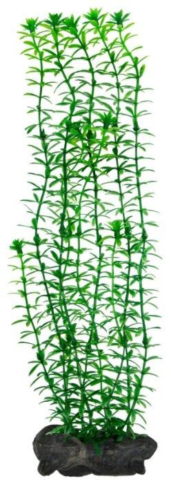 Искусственное растение Tetra Anacharis L