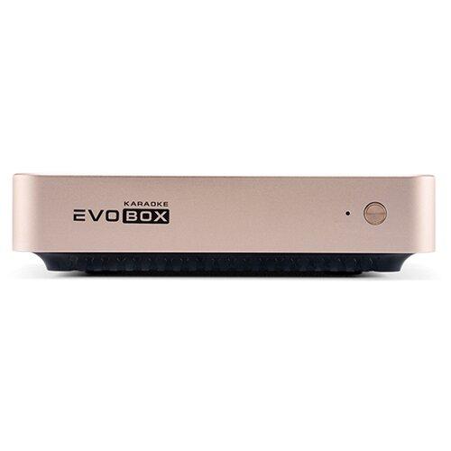 Система караоке Studio Evolution Evobox gold