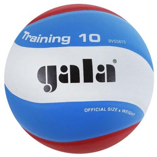 Волейбольный мяч Gala Training 10