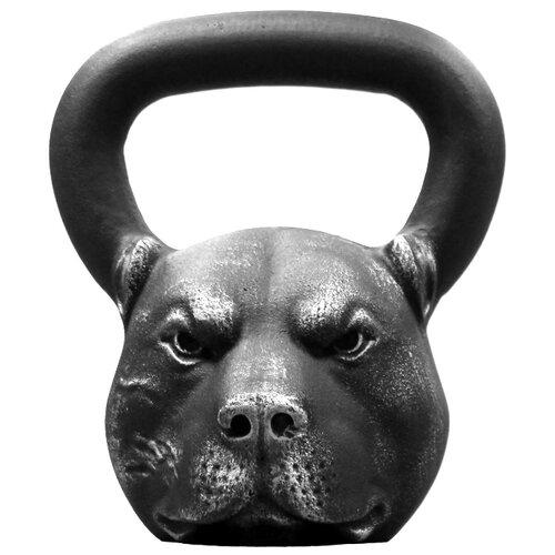 Гиря цельнолитая Iron Head Питбуль 16 кг