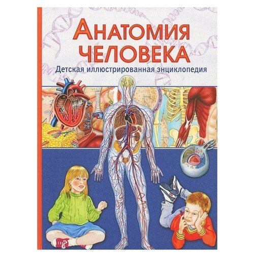 Купить Гуиди В. Детская иллюстрированная энциклопедия. Анатомия человека , Владис, Познавательная литература