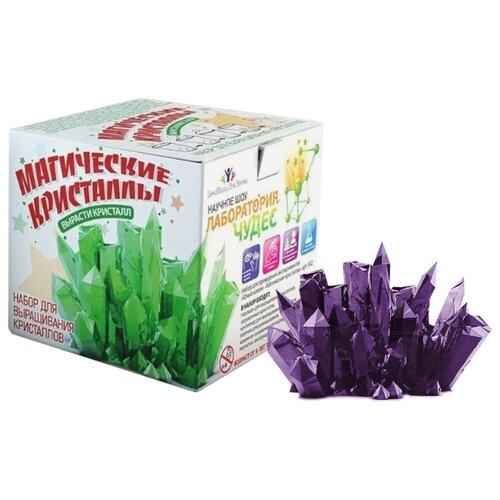 Купить Набор для исследований Инновации для детей Магические кристаллы. Средний набор аметист, Наборы для исследований