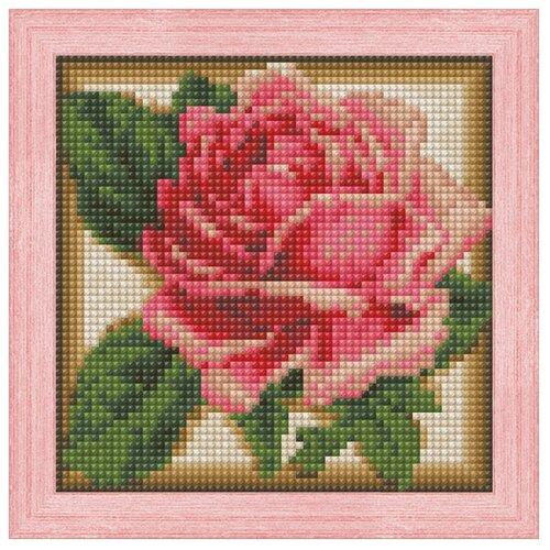 Алмазная живопись Набор алмазной вышивки Румяная роза (АЖ-1450) 15х15 см