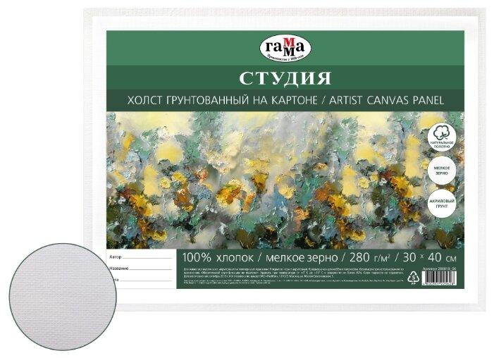 Холст ГАММА Студия на картоне 30х40 см (280818_06)