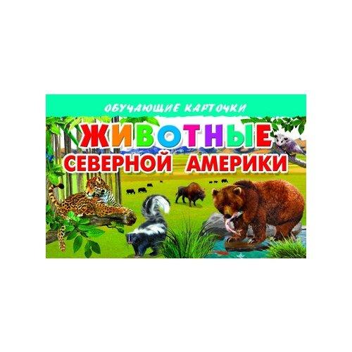 Купить Животные Северной Америки, Литур, Учебные пособия
