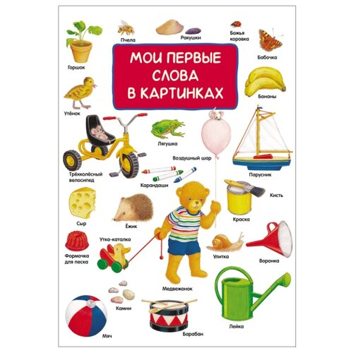 Купить Мои первые слова в картинках, РОСМЭН, Книги для малышей