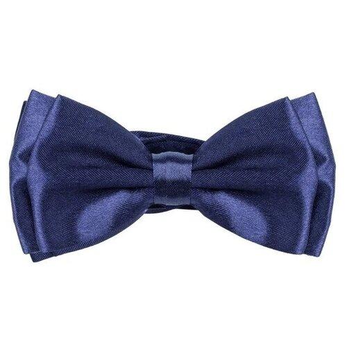 Бабочка Дом свадьбы ДС-000032 синий
