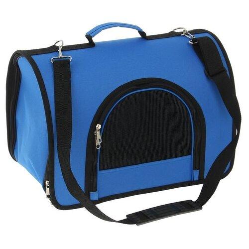 Сумка-переноска для кошек Сима-ленд 2424393/2424397 40х25х28 см синий