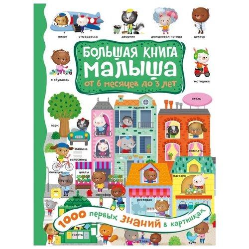 Купить Большая книга малыша: от 6 месяцев до 3 лет. 1000 первых знаний в картинках, Малыш, Познавательная литература