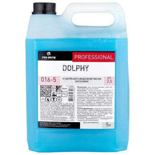 Pro-Brite гель для сантехники Dolphy 5 л средство для уборки сантехнических блоков 5 л pro brite dolphy кислотное концентрат гель 016 5