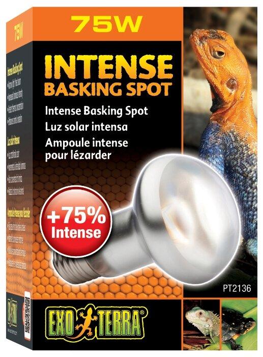 Террариумная греющая лампа Hagen ExoTerra Intense Basking Spot 75 Вт