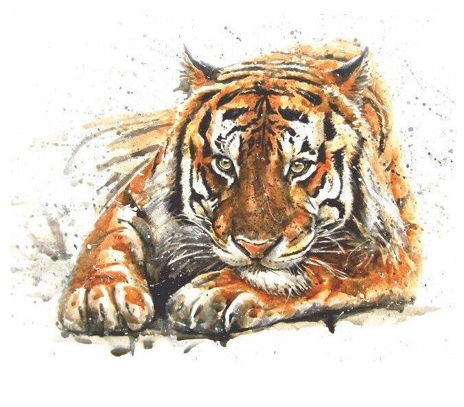 Фотообои бумажные Симфония Амурский Тигр В-003 Bellissimo 1.4х1.4м