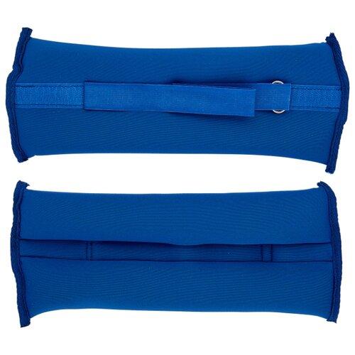 Набор утяжелителей 2 шт. 1 кг Indigo SM-262 синий коляска 3 в 1 indigo indigo 18 special f sp 12 белая кожа
