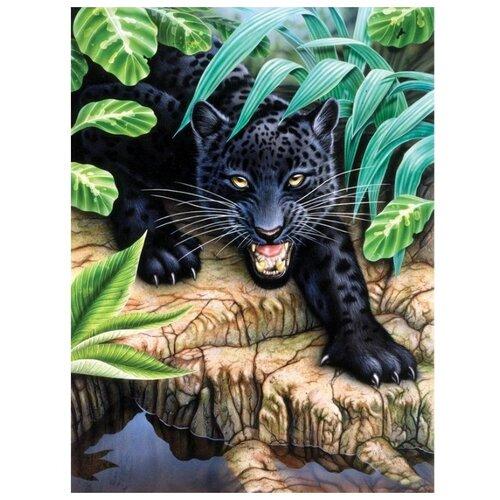 Купить Royal & Langnickel Картина по номерам Чёрный леопард 22х29 см (PJS 42), Картины по номерам и контурам