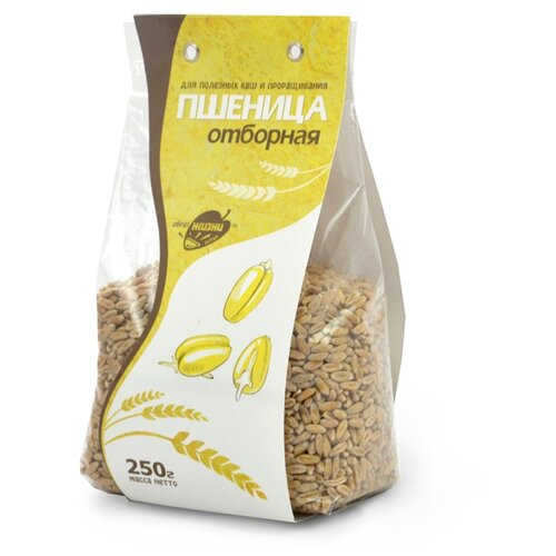 Образ Жизни Алтая Крупа Пшеница отборная 250 г образ жизни алтая крупа пшеница