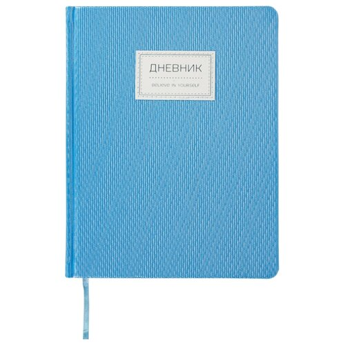 Купить BRAUBERG Дневник 105488 /105489 /105490 голубой, Дневники