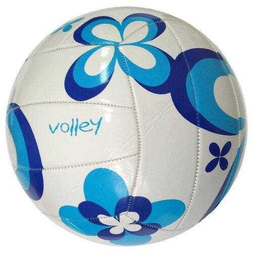 Волейбольный мяч Hawk VB-2003 белый/синий