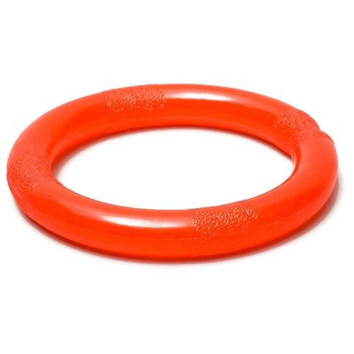 Кольцо для собак Пижон большое несгрызаемое (2830627) оранжевый